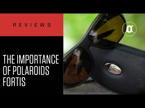 CARPologyTV - Why Polarised Sunglasses Are So Important