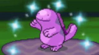 safari week 15 live shiny quagsire after only 731 res in the great marsh win or fail