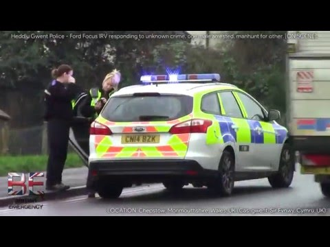 Heddlu Gwent Police - Ford Focus IRVs Responding in Chepstow, Wales