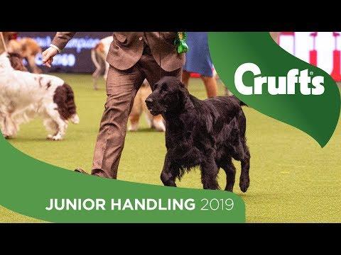 International Junior Handling Competition - Round 1 Part 3 | Crufts 2019