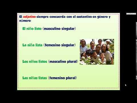 El Adjetivo/Lengua Cuarto de Primaria (9 años)/AulaFacil.com - YouTube