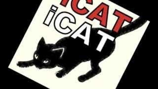 У кошки четыре ноги.