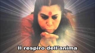 Trailer festa dello Yoga 2015