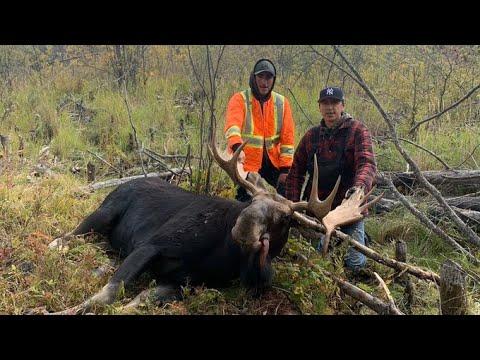 2021 Saskatchewan Moose Hunt
