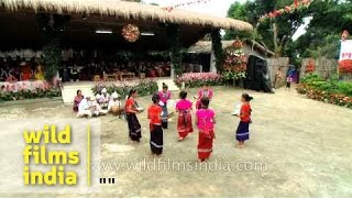Bru (Reang) tribal dance from Tripura