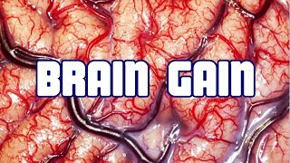 Brain Facts & How to Maximize Your Brain 👍👍👍👍👍