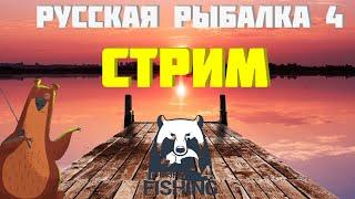 Русская рыбалка 4 стрим С Новым Годом За трофеями