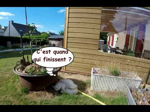 Top Construction d'une pergola / préau - YouTube NN16