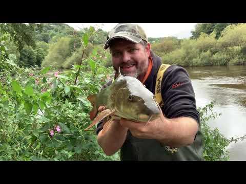 Barbel Fishing On The River Wye