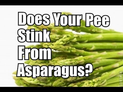 My Pee Stinks From Eating Asparagus! WTF!