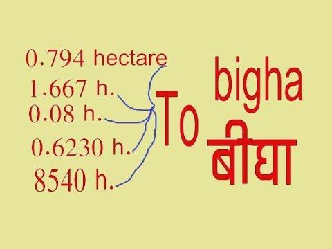 हेक्टेयर से बीघा में कैसे बदलते है How to change from hectare to bigha 2