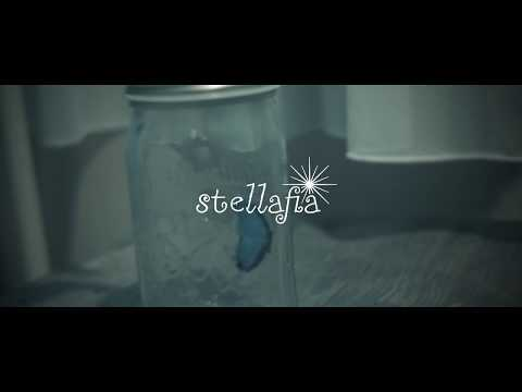 stellafia 「モルフォピア」Music Video