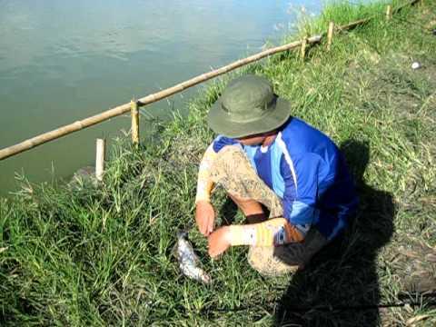 ตกปลาที่บ่อบัง อ่อนนุช 82/2