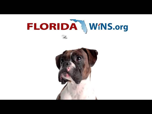 Learn Where Candidates Stand on the Issues at FloridaWins.org