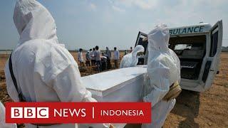 Varian Delta dan perjuangan tim pemulasara: 'Khawatirnya dua kali lipat' - BBC News Indonesia