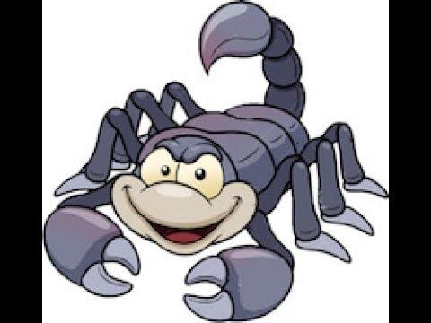 Scorpion Pest Control Scottsdale