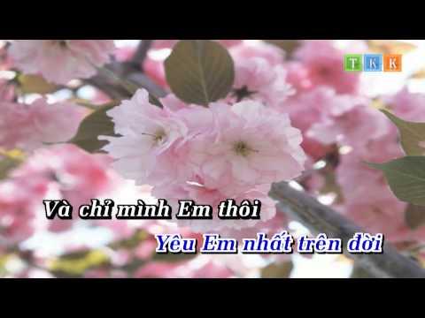 Lời Tỏ Tình Dễ Thương 1 - Ngọc Sơn Karaoke Beat