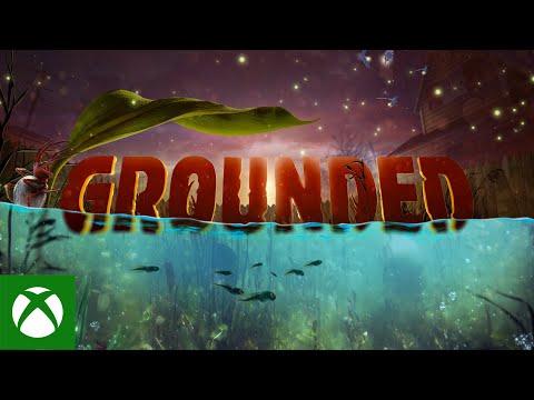 В Grounded уже больше 5 млн игроков: игра обновилась под Xbox Series X   S и получила крупное дополнение