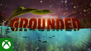 Grounded - The Koi Pond