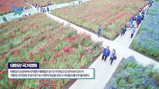 [지오그래픽]태화강국가정원