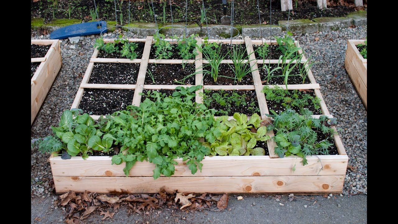 Garden Raised Beds   YouTube