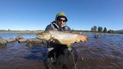 Horseshoe Lake: 5 minute fish