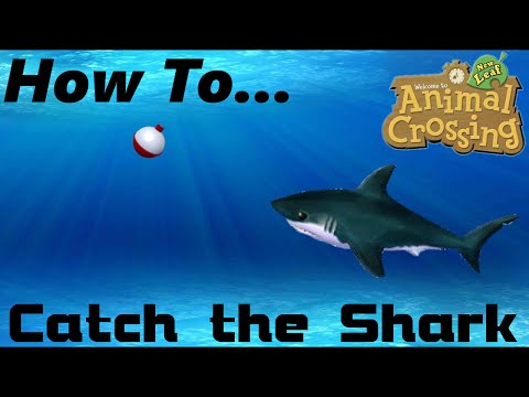 How To: Easily Catch Sharks (ACNL)