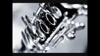 Brahms Clarinet Sonata in F minor: II. Andante un poco Adagio