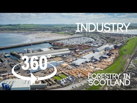 Forestry in Scotland 360 VR (Teaser #3 -