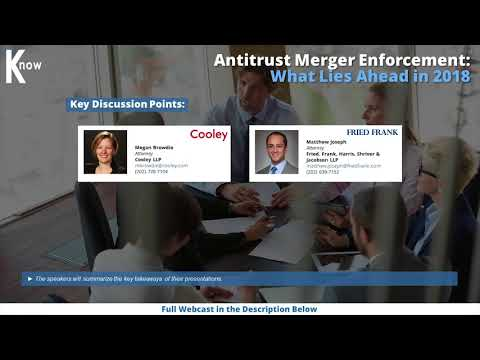 Antitrust Merger Enforcement