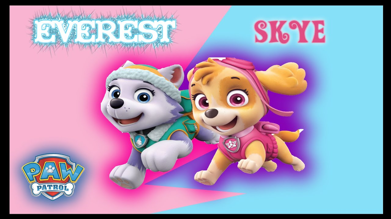 Paw Patrol Everest And Skye Coloring Page