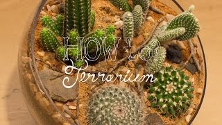 how to fix terrarium tv
