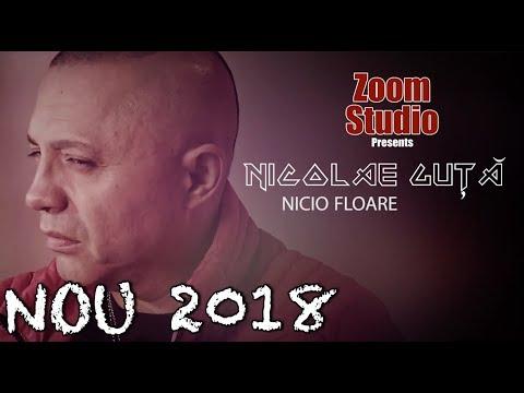 Nicolae Guta - Nicio floare (Oficial Audio 2018 ) SUPER HIT