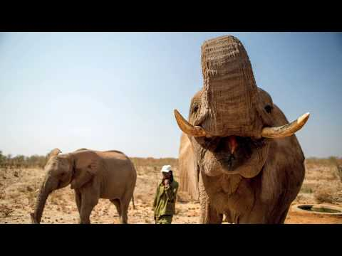 Zimbabwe travel story