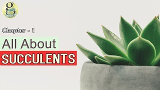 CACTI AND SUCCULENTS for beginners - INTRODUCTION   Difference between cactus and succulents