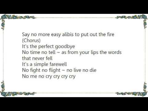 Heart - The Perfect Goodbye Lyrics