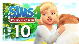 TS4 / Кошки и собаки #10 - СВАДЬБА И НОВАЯ КЛИНИКА