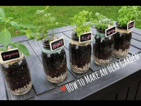 How To: Indoor Herb Garden