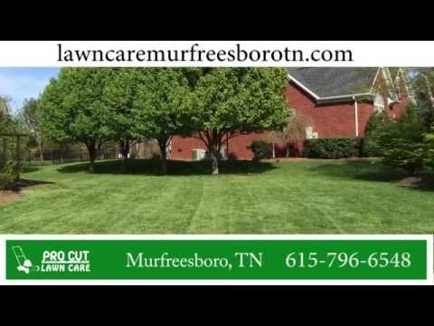 Lawn Care Murfreesboro TN | 615-796-6548