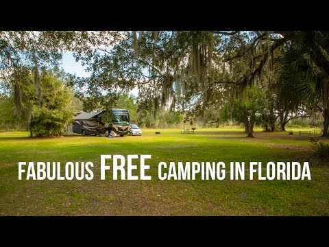 Fantastic Free Camping In Florida Youtube