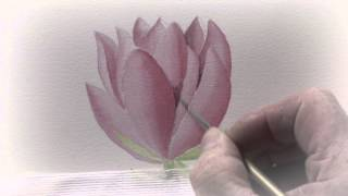 A-Z of Botanical Flowers in Watercolour with Michael Lakin DVD Trailer