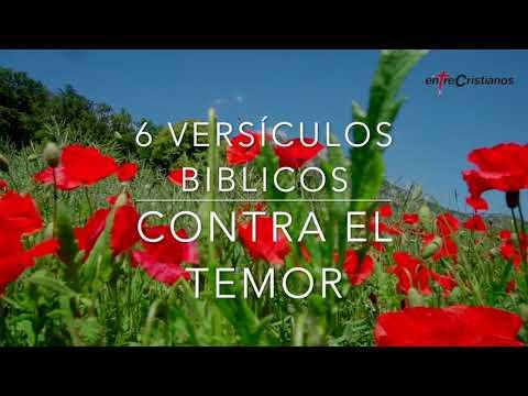 6 versículos bíbilicos contra el temor