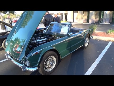 Classic and Antique Cars on Display in Jacksonville Florida