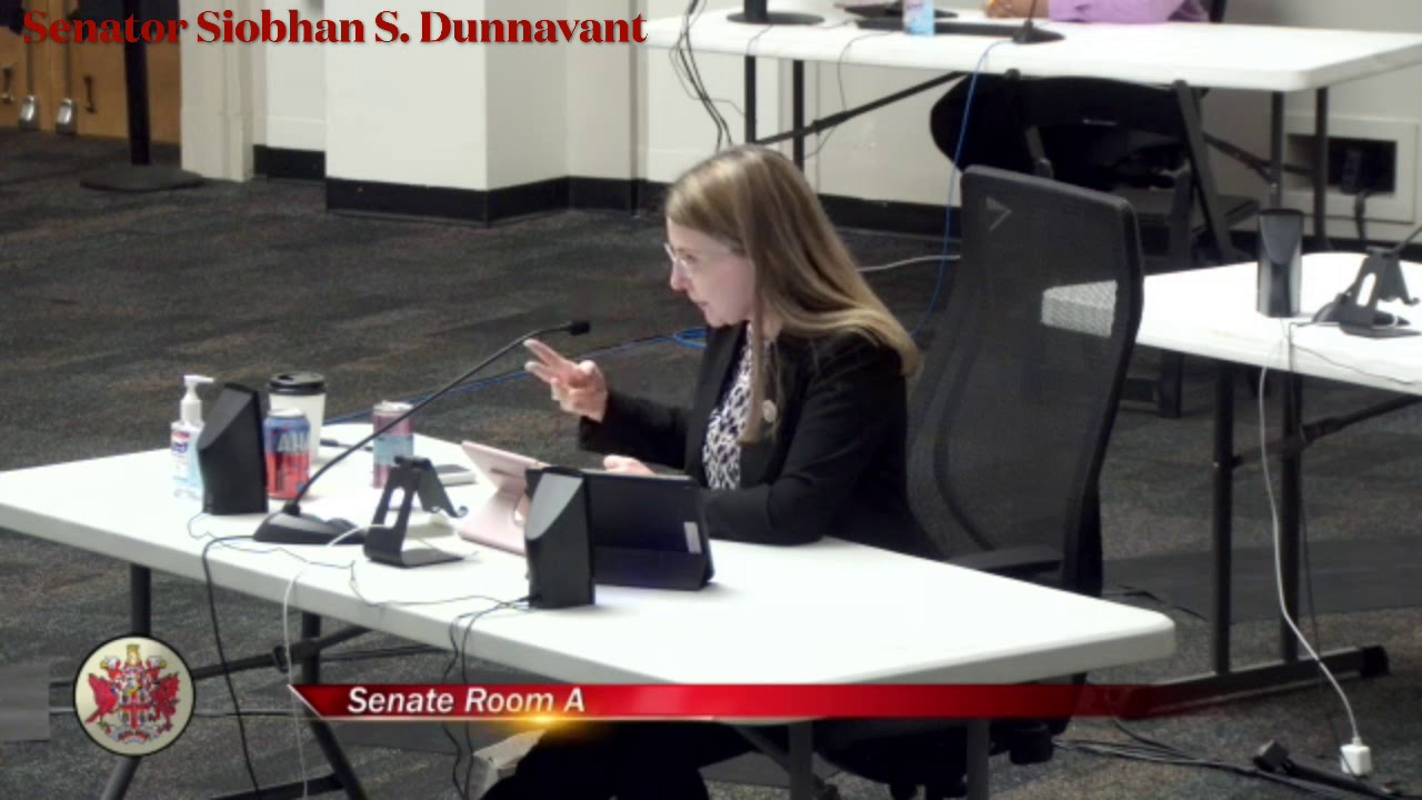 Senator Siobhan Dunnavant Speaking to SB1288 in Public Education Subcommittee
