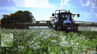 Zwalczanie zarazy ziemniaka i alternariozy - EKONOM