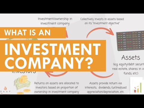 What Is An Investment Company (ASC 946)?