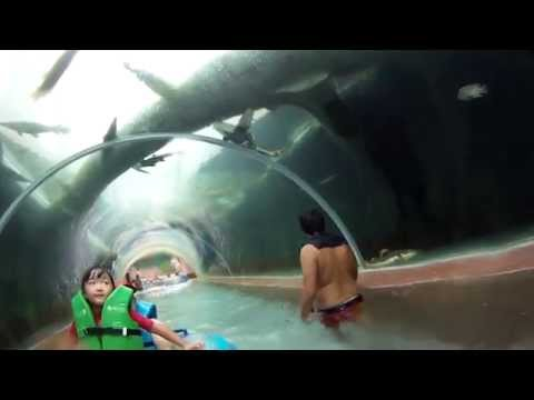 Adventure Cove Waterpark Sentosa Singapore