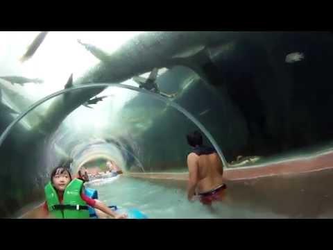 Adventure Cove Waterpark Sentosa Singapore