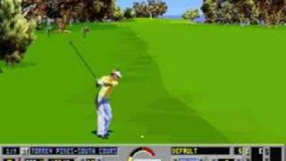 Links:  The Challenge of Golf DOS, Just One Hole