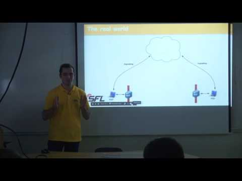 Hovhannes Gasparyan SFL Peer-to-peer video and file sharing on the web